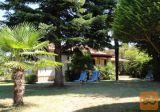 Novigrad - apartma - počitniška hiša