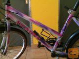 Roza vijolično rekreativno mladinsko kolo