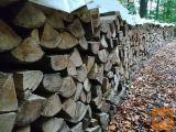 Suha cepljena bukova drva