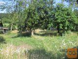 Moravče Prikrnica 4000 m2