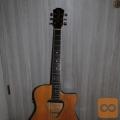Prodam električno -akustično kitaro znamke HOHNER