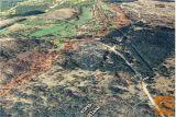 Prodamo 8 Kmetijskih Parcel Okolica Socerba